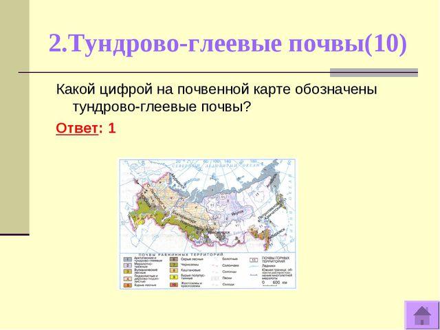2.Тундрово-глеевые почвы(10) Какой цифрой на почвенной карте обозначены тундр...