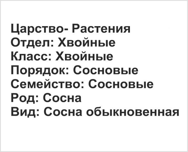 C:\Users\Катя\Desktop\0723841.jpg
