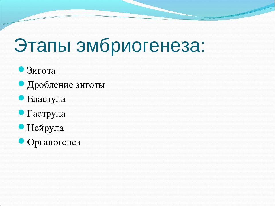 Этапы эмбриогенеза: Зигота Дробление зиготы Бластула Гаструла Нейрула Органог...