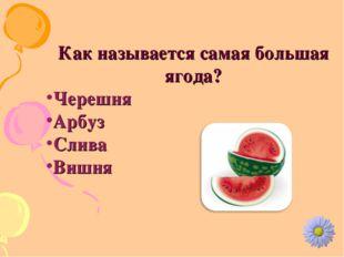 Как называется самая большая ягода? Черешня Арбуз Слива Вишня