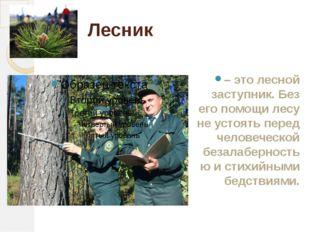 Лесник – это лесной заступник. Без его помощи лесу не устоять перед человечес