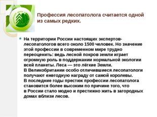Профессия лесопатолога считается одной изсамых редких. Натерритории России