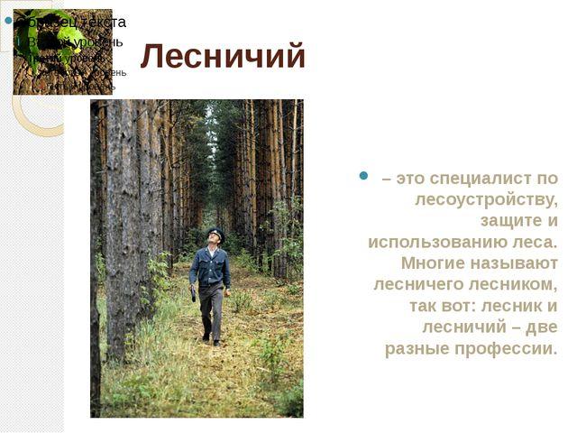 Лесничий – это специалист по лесоустройству, защите и использованию леса. Мно...