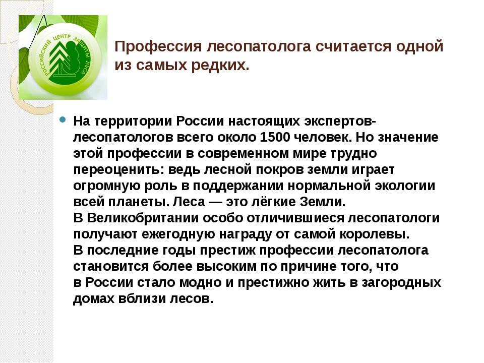 Профессия лесопатолога считается одной изсамых редких. Натерритории России...
