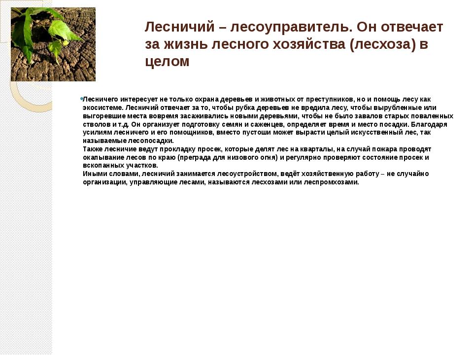 Лесничий – лесоуправитель. Он отвечает за жизнь лесного хозяйства (лесхоза) в...