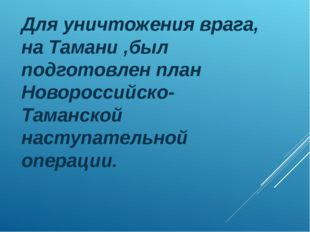 Для уничтожения врага, на Тамани ,был подготовлен план Новороссийско-Таманско
