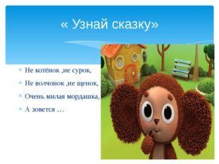 « Узнай сказку» Не котёнок ,не сурок, Не волчонок ,не щенок, Очень милая морд
