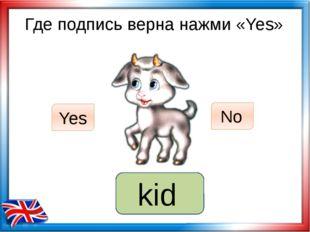 Где подпись верна нажми «Yes» fox Yes No kid