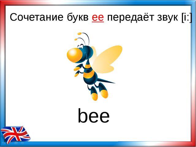 Сочетание букв ee передаёт звук [i:] bee