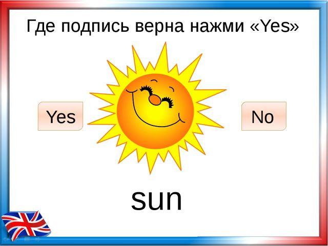 Где подпись верна нажми «Yes» sun Yes No