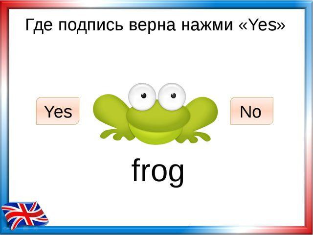 Где подпись верна нажми «Yes» frog Yes No