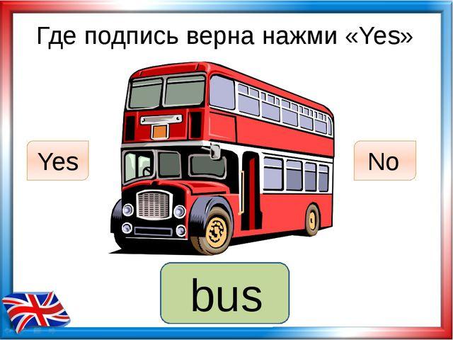 Где подпись верна нажми «Yes» lorry Yes No bus