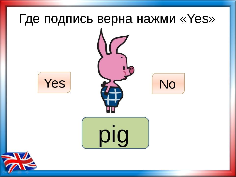 Где подпись верна нажми «Yes» dog Yes No pig
