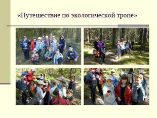 «Путешествие по экологической тропе»