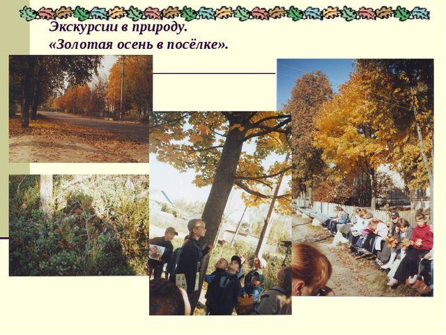 Экскурсии в природу. «Золотая осень в посёлке».