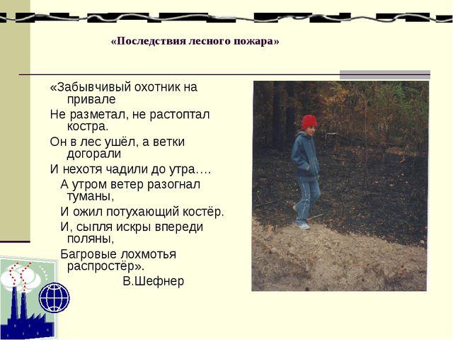 «Последствия лесного пожара» «Забывчивый охотник на привале Не разметал, не...