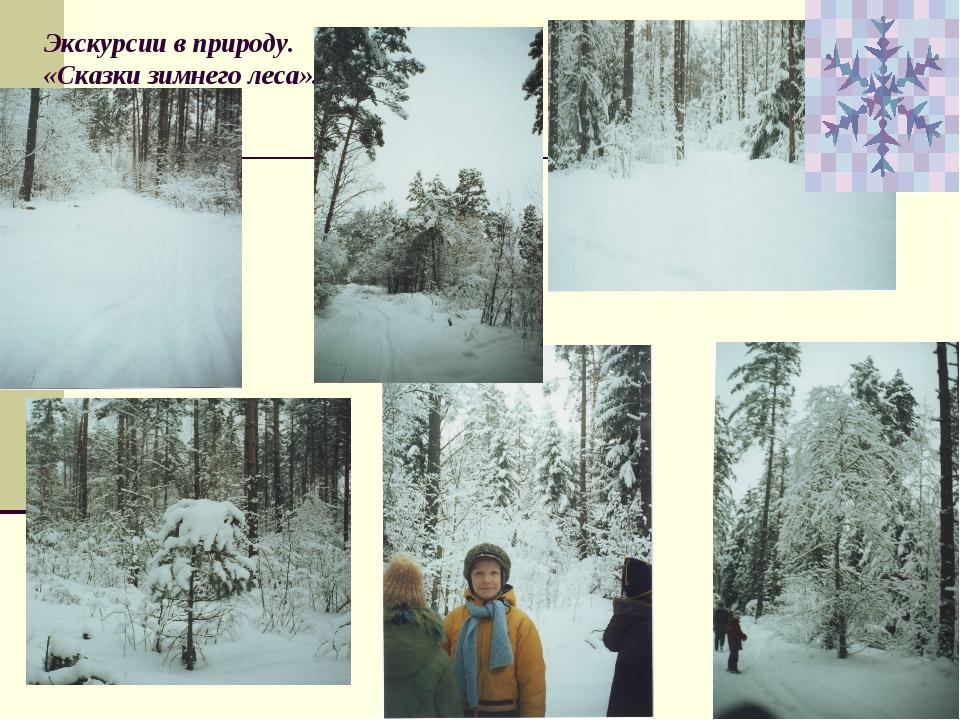 Экскурсии в природу. «Сказки зимнего леса».