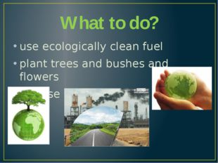What to do? use ecologically clean fuel plant trees and bushes and flowers no