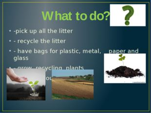 What to do? -pick up all the litter - recycle the litter - have bags for plas