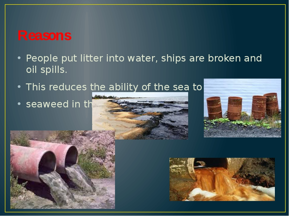 Reasons People put litter into water, ships are broken and oil spills. This r...