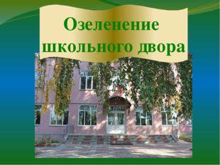 Озеленение школьного двора