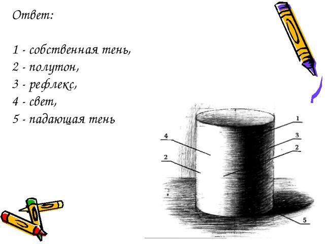 Ответ: 1 - собственная тень, 2 - полутон, 3 - рефлекс, 4 - свет, 5 - падающая...