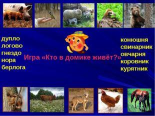 Игра «Кто в домике живёт?» дупло логово гнездо нора берлога конюшня свинарник