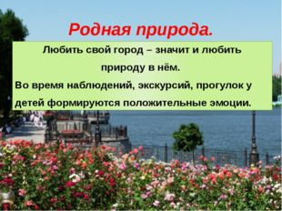 Родная природа. Любить свой город – значит и любить природу в нём. Во время н