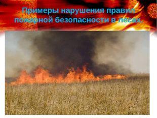 Примеры нарушения правил пожарной безопасности в лесах.
