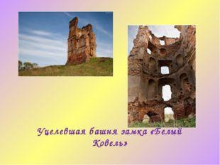 Уцелевшая башня замка «Белый Ковель»