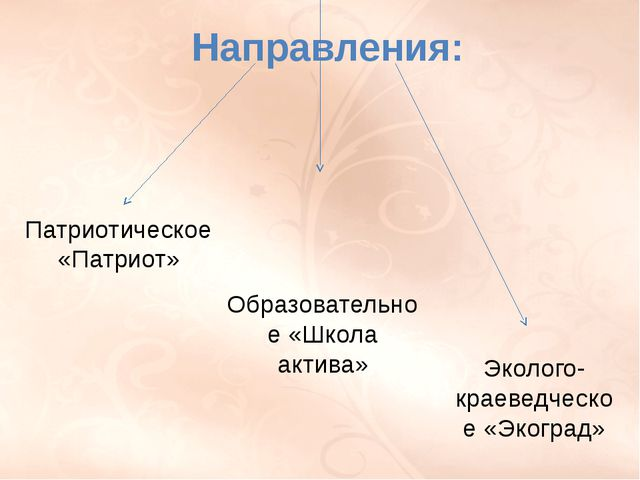 П. 22 стр. 160-164, РТ п. 22 № 1, 2, 3. Направления: Патриотическое «Патриот»...