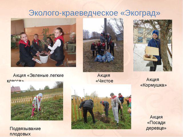 П. 22 стр. 160-164, РТ п. 22 № 1, 2, 3. Эколого-краеведческое «Экоград» Акция...