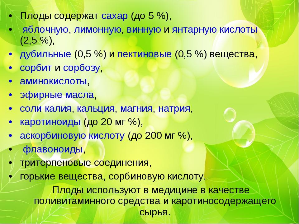 Плоды содержат сахар (до 5%), яблочную, лимонную, винную и янтарную кислоты...