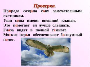 Проверка. Природа создала сову замечательным охотником. Уши совы имеют внешни