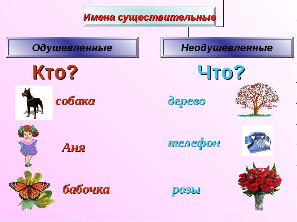 Кто? Что? собака Аня бабочка розы телефон дерево
