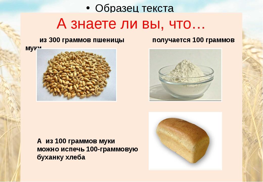А знаете ли вы, что… из 300 граммов пшеницы получается 100 граммов муки А из...