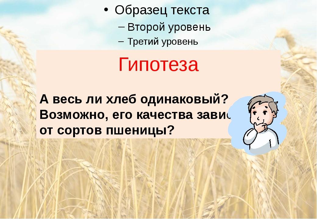 Гипотеза А весь ли хлеб одинаковый? Возможно, его качества зависят от сортов...