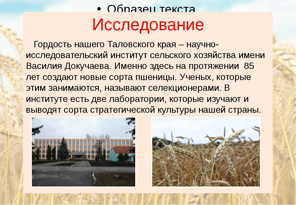 Исследование Гордость нашего Таловского края – научно-исследовательский инсти...