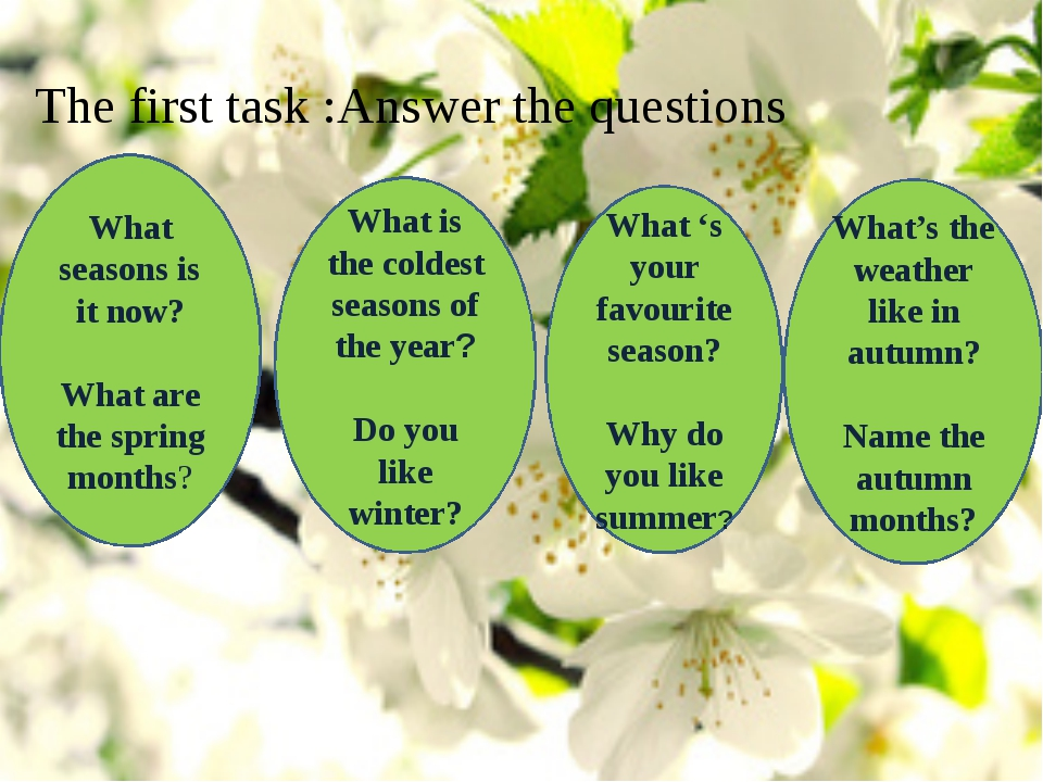 The first task :Answer the questions What seasons is it now? What are the spr...