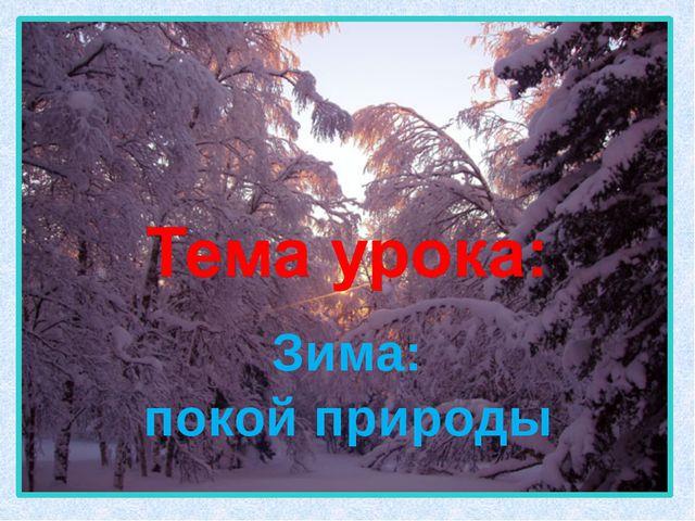 Зима: покой природы