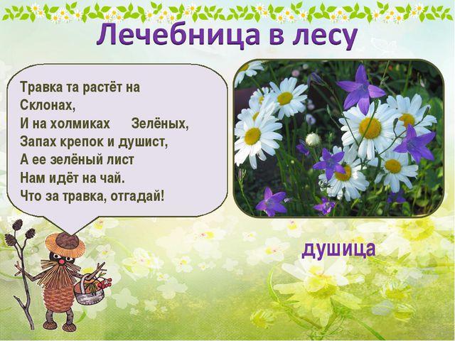 Травка та растёт на Склонах, И на холмиках Зелёных, Запах крепок и душист, А...