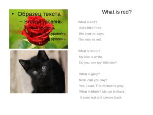 What is red? What is red? Asks little Fred. His brother says, The rose is re