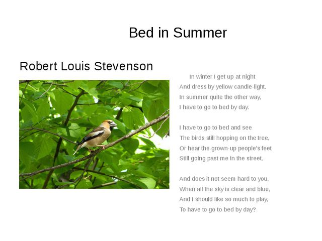 Bed in Summer Robert Louis Stevenson In winter I get up at night And dress by...