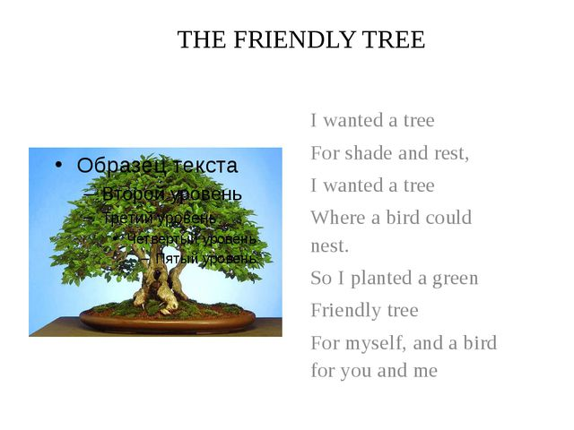THE FRIENDLY TREE I wanted a tree For shade and rest, I wanted a tree Where a...
