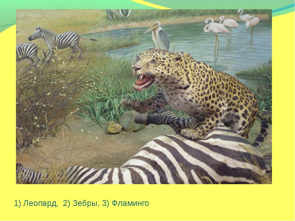 1) Леопард, 2) Зебры, 3) Фламинго
