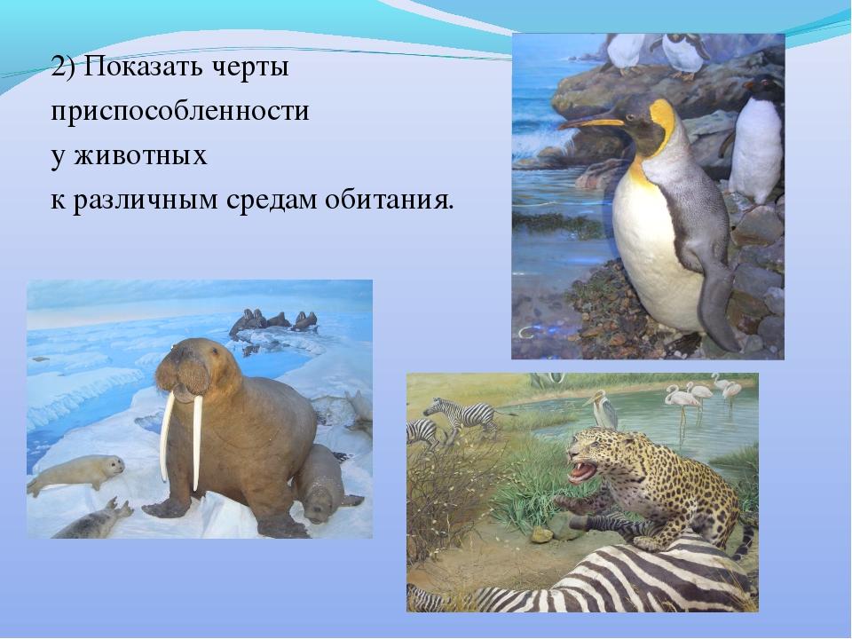 2) Показать черты приспособленности у животных к различным средам обитания.