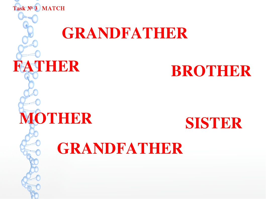 Task № 3 MATCH FATHER BROTHER MOTHER GRANDFATHER GRANDFATHER SISTER