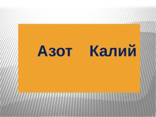 Азот Калий