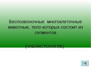 Беспозвоночные многоклеточные животные, тело которых состоит из сегментов (Ч