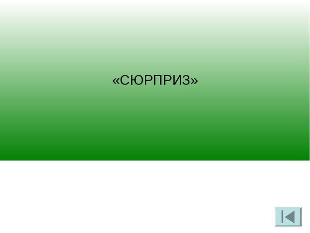 «СЮРПРИЗ»